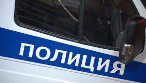 Полицейские в Петербурге задержали автоугонщика